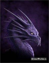 Mr_Dragon1